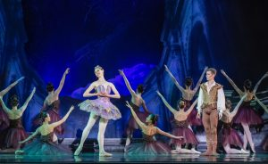 Sleeping Beauty, Lilac Fairy and Prince Desire
