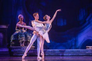 Sleeping Beauty, Prince Desire and Aurora